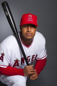 As atrocious as Wells has been with the Angels, he still has 36 HRs and 95 RBI in his 748 AB with Anaheim in the last 2 years.  He could potentially hit 30 HRs this year with the Yankees if traded..