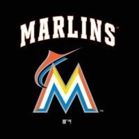 The Miami Marlins Payroll In 2014, Organizational Affiliates, Prospects, Depth Charts, (MLB + MiLB)