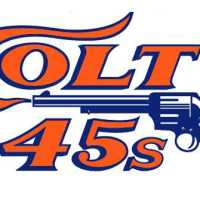 The End of the Astros:  Bring Back the Houston Colt .45s